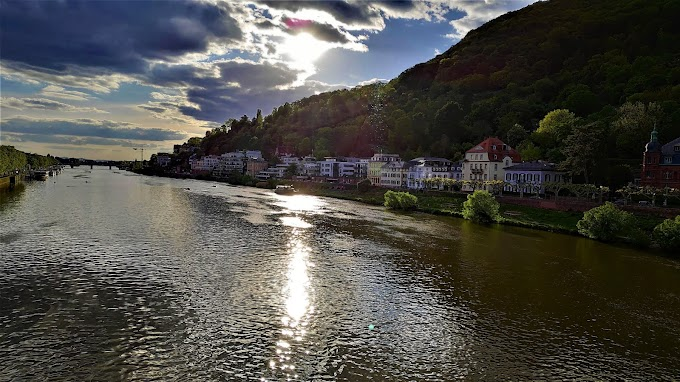 Magnificent River Neckar