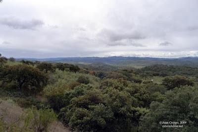 granja-de-torrehermosa-monesterio