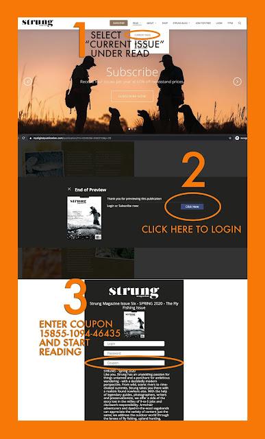 STRUNG Magazine - Free Read Offer
