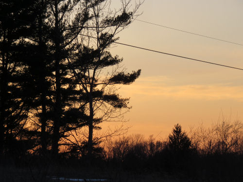 pale orange sunset
