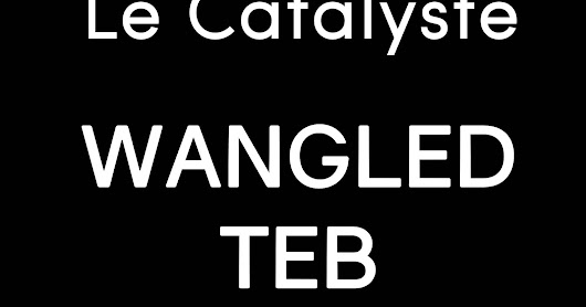 Le Catalyste #86: Wangled Teb (live set), JLTA, Tin Man, TML, Isabella, Mark The 909 King