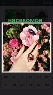 насекомое ползет по цветку который хочет сорвать рука женщины