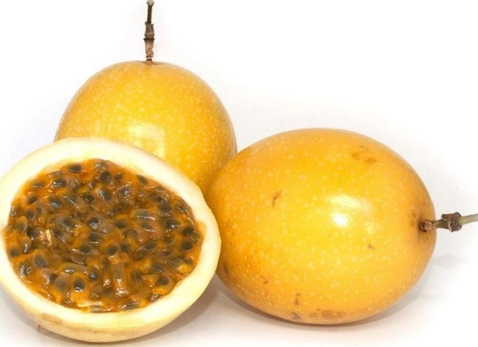 Bibit Benih Biji Buah Markisa Kuning Yellow Passion Fruit Kaya Manfaat Isi 10 Biji Sulawesi Tenggara