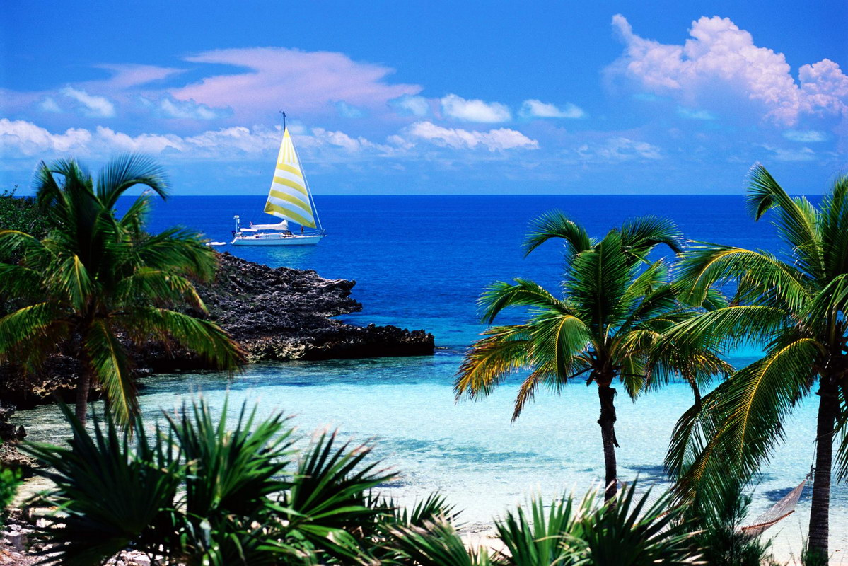 Carribean Beauty: Caribbean, Free Stock Photos