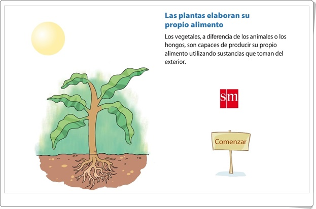 """""""Las plantas elaboran su propio alimento"""" (Animación interactiva de Ciencias Naturales de Primaria)"""