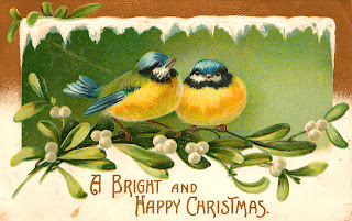 christmas mistletoe birds image greeting