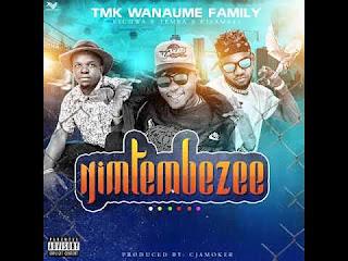 (New AUDIO) | Tmk Wanauma Family Ft Tk Nendeze – Nimtembezee | Mp3 Download (New Song)