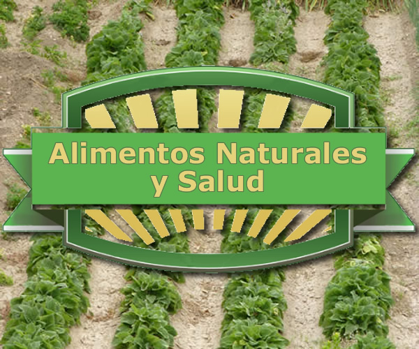Alimentos Naturales y Salud. Productos alimenticios no procesados industrialmente para mejorar su salud.