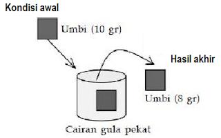 No 8 Asesment Biologi SMA Latihan (UN) Program IPA (Bagian 3)