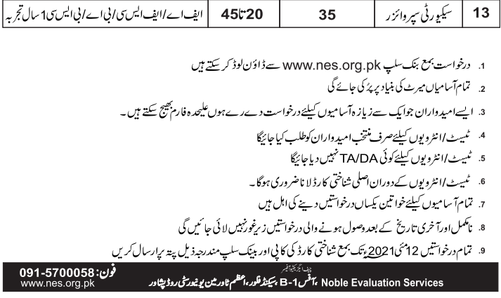 www.nes.org.pk Jobs 2021 - Noble Evaluation Services NES Jobs 2021 in Pakistan