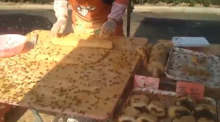 Εσείς πόσες μέλισσες φάγατε σήμερα; Απίστευτο video