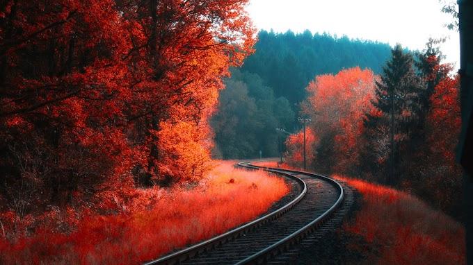 Lindo Papel de Parede Estrada de Ferro