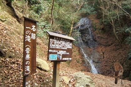 น้ำตกโอโตนาชิ โนะ ทากิ (Otonashi no Taki Waterfall) @ www.youinjapan.net