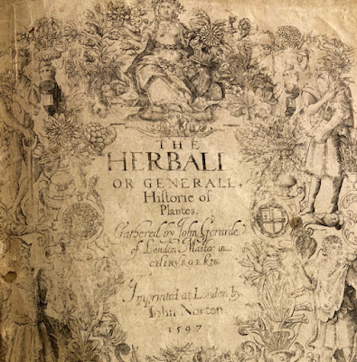 Metal engraved title page of 16th century book: The Herball written by John Gerard.