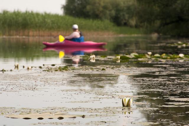 Parcheş; Danube Delta, Romania