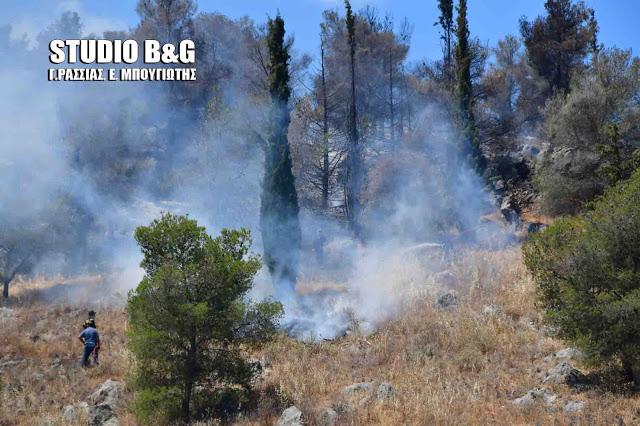 Σε υψηλό κίνδυνο πυρκαγιάς και το Σάββατο 11 Ιουλίου η Αργολίδα