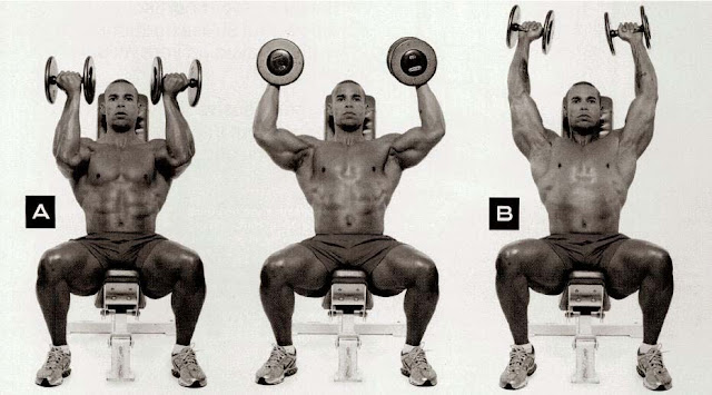 dumbbell shoulder exercises