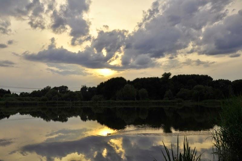 Der Malchower See