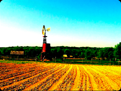 Pioneer Farms in Austin