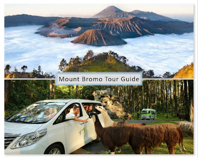 Mount Bromo and Safari Park tour 2 days 1 night