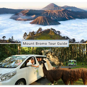 Mount Bromo and Safari Park tour 2 days 1 night