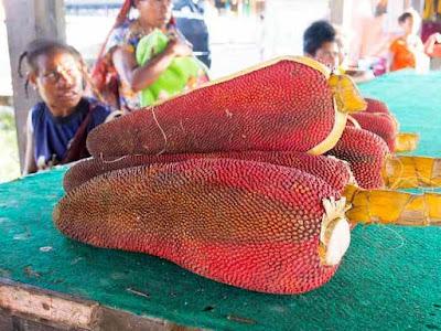 Manfaat Buah Merah Papua