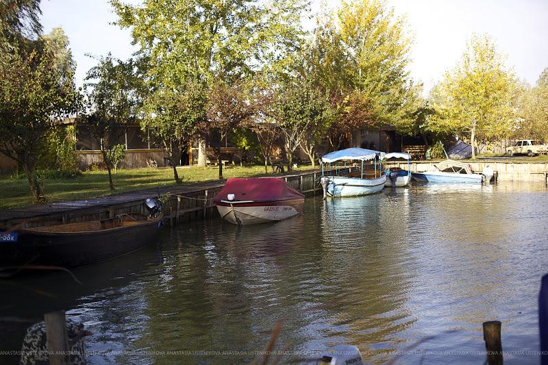 плыть по Дунаю на лодке