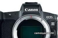 CANON EOS-Rの部分写真