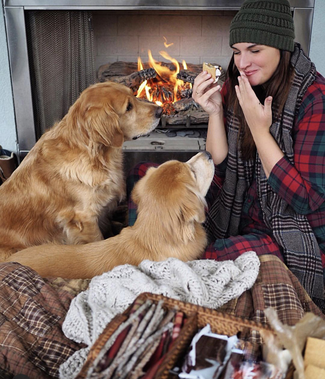 Golden Retrievers S'mores