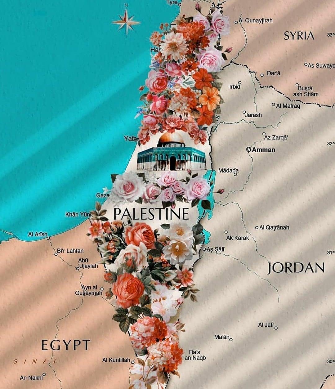 Palestina demandará a Google y Apple por su eliminación de mapas
