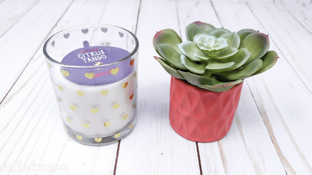 Bullseye's Playground | Scented Candle & Succulent Plant