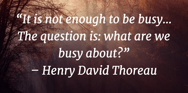 It is not enough to be busy . . . The question is: what are we busy about? – Henry David Thoreau