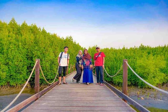 Tiket Masuk Pantai Duta Paiton Probolinggo, Nikmati Sunset, Hiu Paus dan Hutan Mangrove