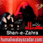 http://www.humaliwalayazadar.com/2016/06/shan-e-zehra-nohay-2014-to-2017.html