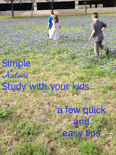 Simple Nature Study with Your Kids