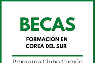 BECAS DE FORMACIÓN COREA DEL SUR CON GLOBO COMÚN