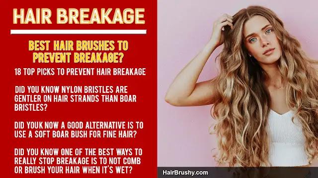 Best brushes to reduce breakage