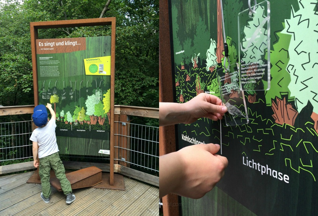 Naturerlebnispark & Jugendherberge Panarbora, Baumwipfelpfad, Waldbröl, Baumkronenpfad, Baumwipfelweg, Naturpfad, Ausflugsziel mit Kindern in der Nähe von Köln, Ausflug ins Grüne, Holzturm, mittwochs mag ich, Mmi