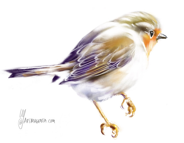 Robin bird painting by Artmagenta