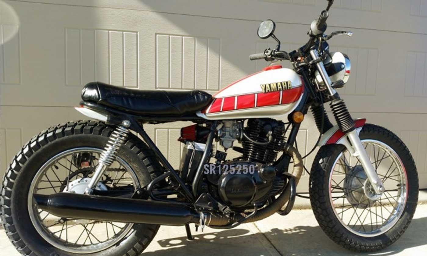 1981 Yamaha SR250 Scrambler Custom - Yamaha SR Family