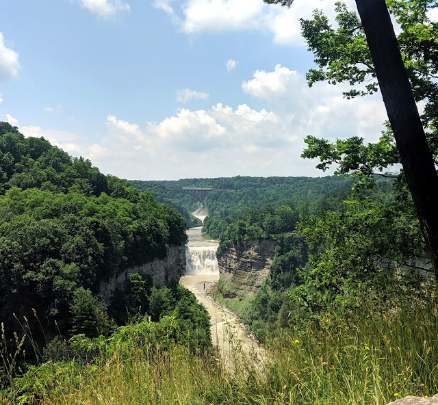 Genesee River and Gorge in Letchworth State Park