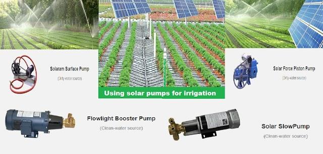 Using solar pumps for irrigation | solar pumps for irrigation