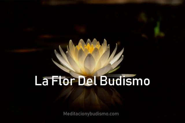 La flor del budismo