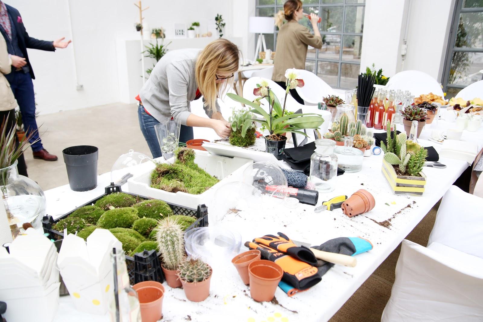 Wohnen} pflanzen  und indoor trends   mein feenstaub – diy, deko ...