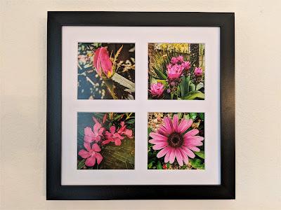 Magenta Flowers Tetraptych by Citysqwirl