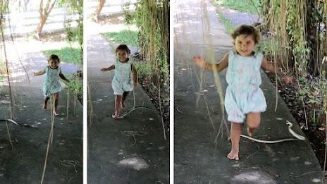 Anak kecil berlari nyaris digigit ular