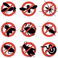 Tips Bahan Alami Penolak & Pengusir Berbagai Macam Serangga
