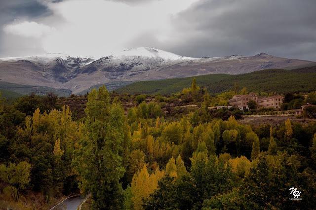Nieve en la Sierra de Jérez