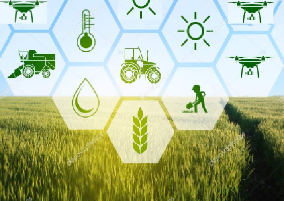 How AI uses in Agriculture sector?