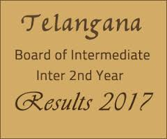 TELANAGA INTERMEDIATE SECOND YEAR RESULTS